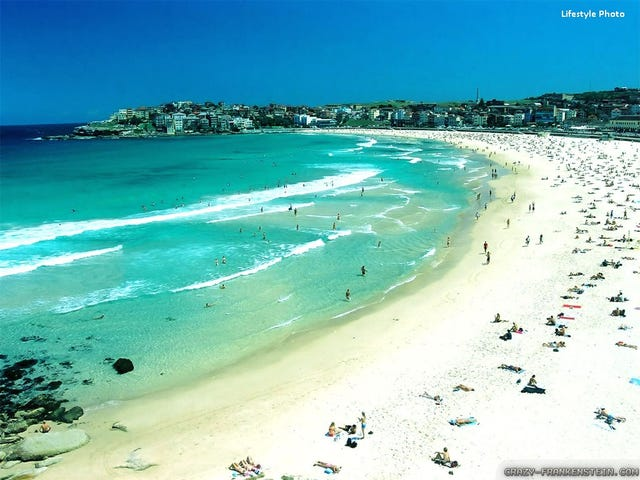 39 Curlewis Street, Bondi Beach, NSW 2026