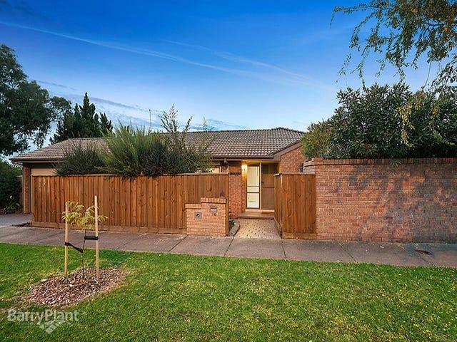 14 Glenbrae Court, Berwick, Vic 3806