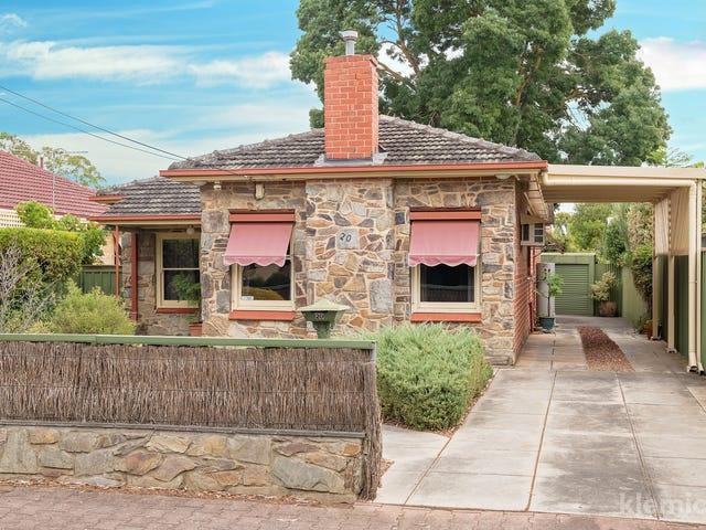 20 Foster Street, Parkside, SA 5063