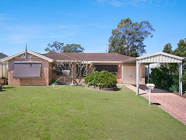 151 Coachwood Drive, Medowie, NSW 2318