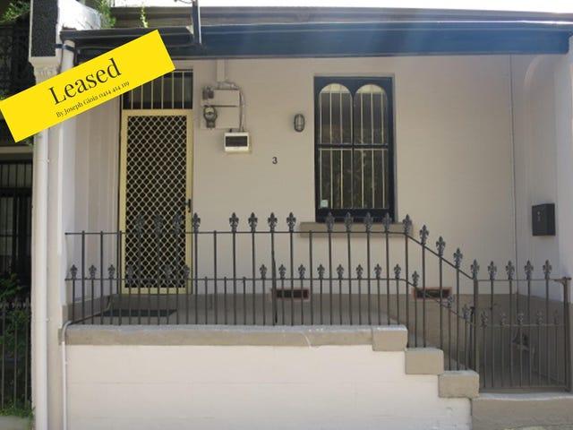 3 Bucknell Street, Newtown, NSW 2042