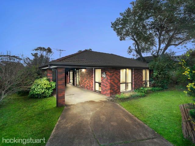 60 Whitehead Grove, Rosebud, Vic 3939