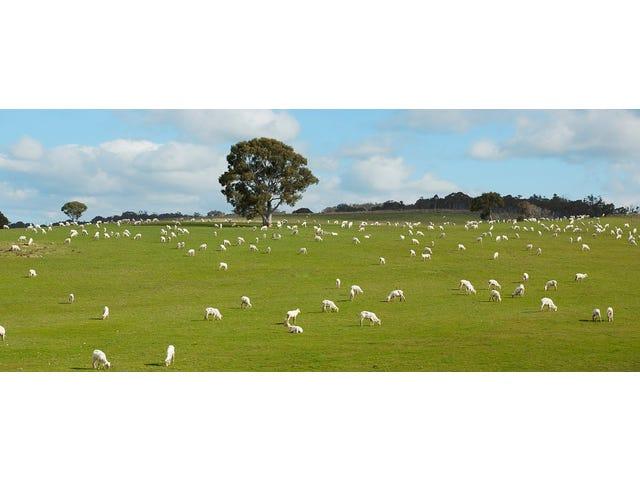 Woodlands, Bungendore, NSW 2621