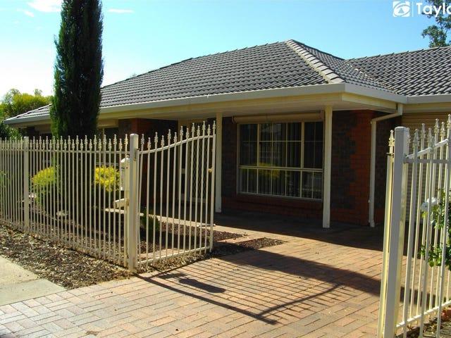 13 Patola Street, Magill, SA 5072