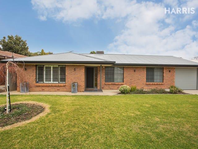 565 Yatala Vale Road, Fairview Park, SA 5126