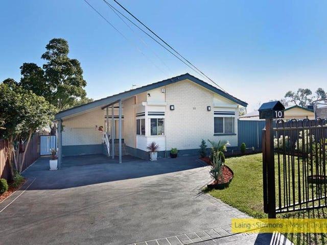 10 Idriess Crescent, Blackett, NSW 2770
