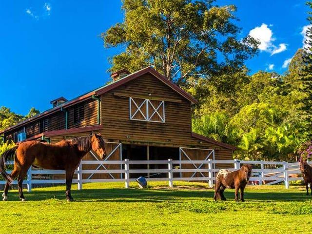 571 Gold Coast-Springbrook Road, Mudgeeraba, Qld 4213