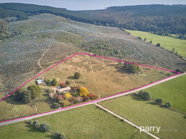 91 Fenckers Road, Branxholm, Tas 7261