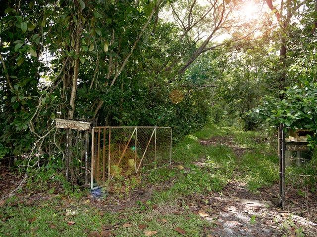 3390 Mossman Daintree Road, Daintree, Qld 4873