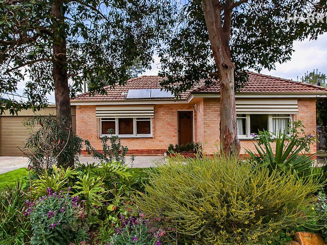 3 Lily Avenue, Campbelltown, SA 5074