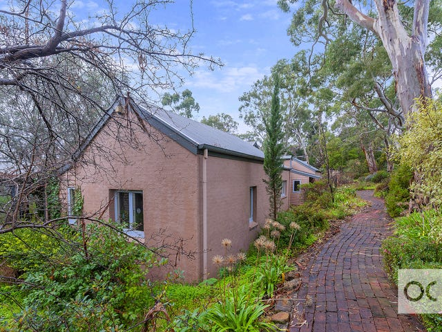 111 Woodland Way, Teringie, SA 5072