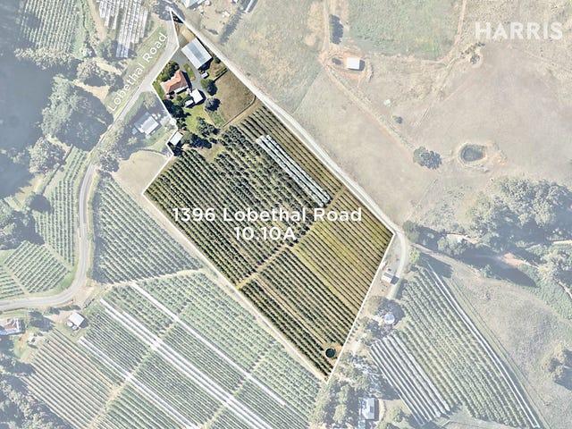 1396 Lobethal Road, Forest Range, SA 5139