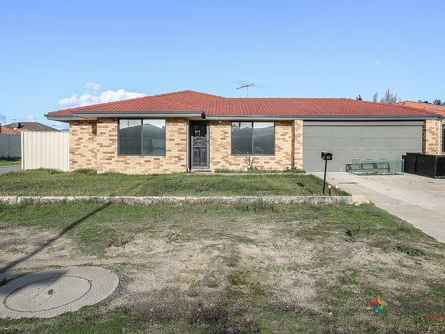 17 Freeduff, Wattle Grove, WA 6107
