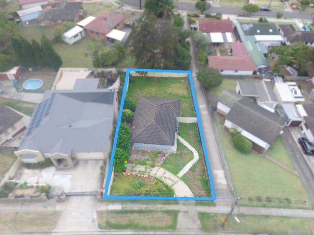 113 Sadlier Avenue, Ashcroft, NSW 2168