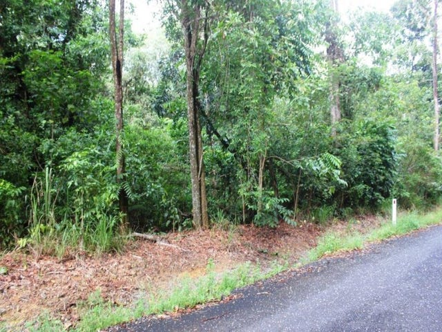 75 Forest Creek Road FOREST CREEK, Daintree, Qld 4873
