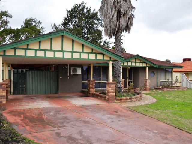 24 Holley Place, Marangaroo, WA 6064