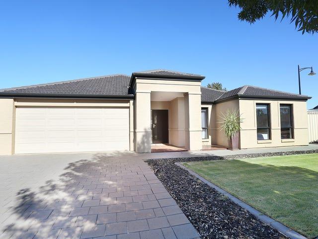 21 Roche Street, Freeling, SA 5372