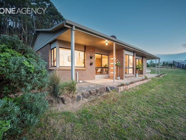 249 Lowries Road, Oldina, Tas 7325