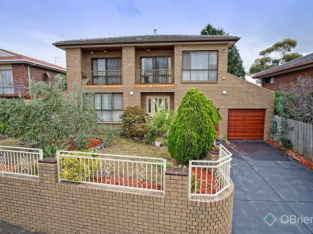 39 Daniel Solander Drive, Endeavour Hills, Vic 3802