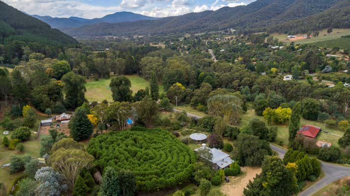 Wandiligong Hedge Maze, 11 White Star Road Wandiligong VIC 3744 - Image 2