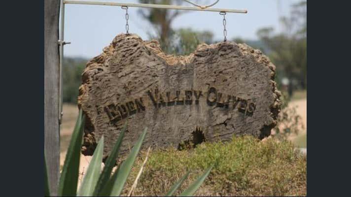 Eden Valley Olives, 4335 Mellburra Road Bellata NSW 2397 - Image 2