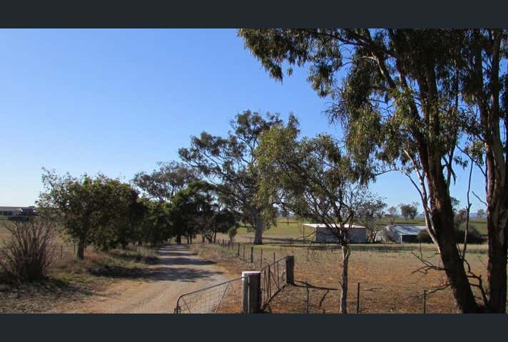 Rothesay, 606 Peabody Road Molong NSW 2866 - Image 1