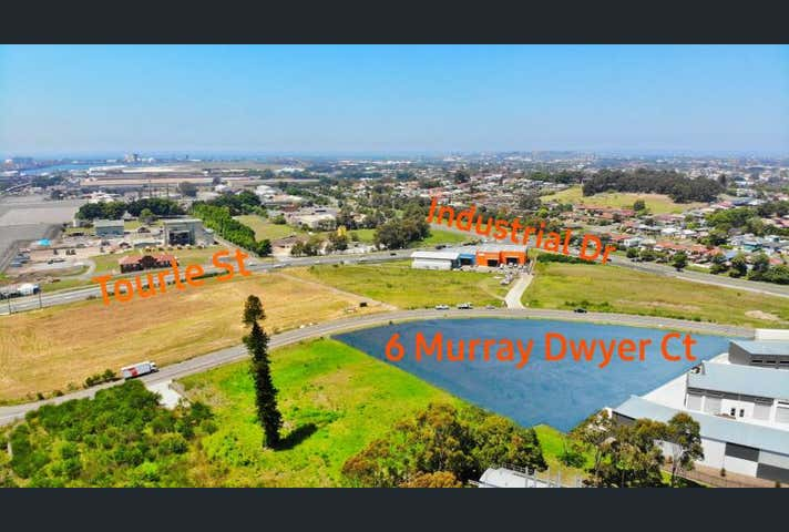 6 Murray Dwyer Ct Mayfield West NSW 2304 - Image 1