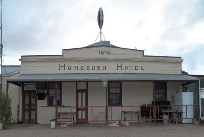 Homebush Hotel, Lot 1 Penarie Balranald NSW 2715 - Image 1