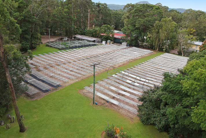 The Water Gardens, 109 Creightons Road Kulangoor QLD 4560 - Image 1