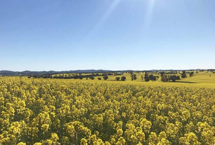 Temora NSW 2666 - Image 1