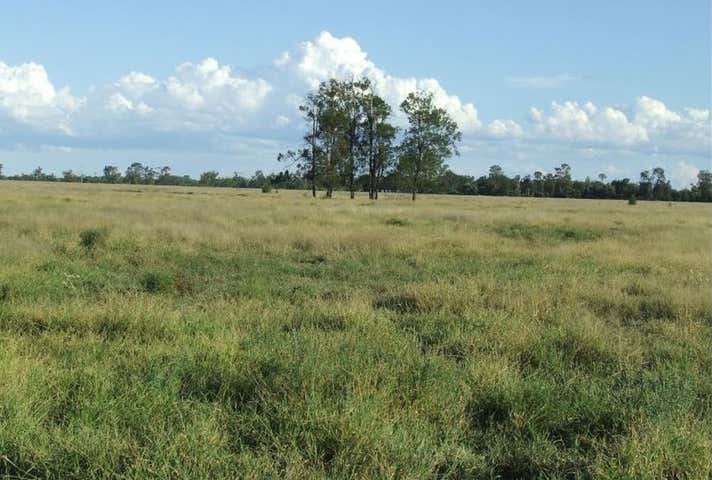 Lot 24 & 25 Texas Yelarbon Road Glenarbon QLD 4385 - Image 1
