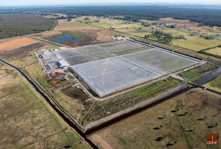 Maria's Farm Veggies, 183  Cabbage Tree Road Williamtown NSW 2318 - Image 1
