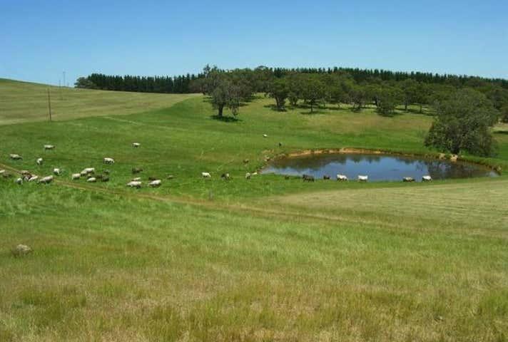 Lot 50 Blackfellows Creek Road Prospect Hill SA 5201 - Image 1