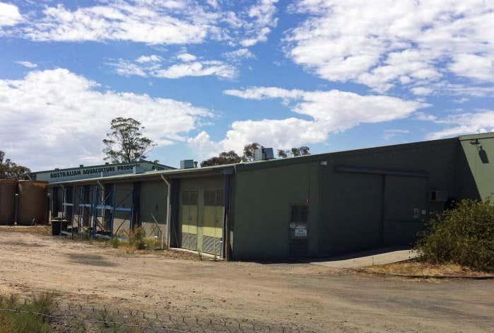 Fish Farm, 48 - 52 Graham Street Euroa VIC 3666 - Image 1