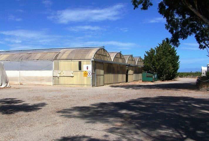 41 Paddy's Row, Aldinga, SA 5173
