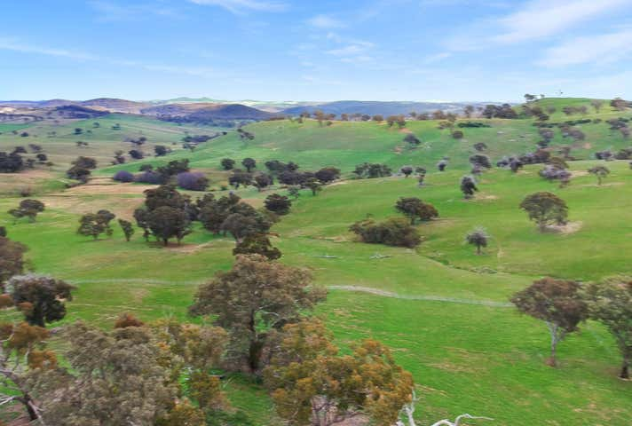 656 Rockley Rd Georges Plains NSW 2795 - Image 1