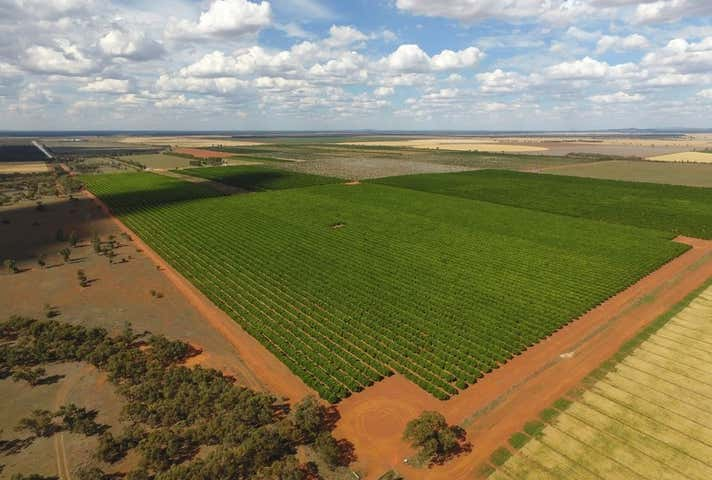 Hillston, address available on request