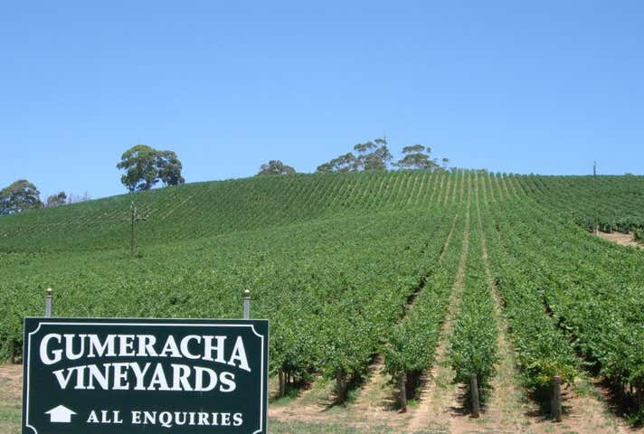 Gumeracha Vineyards, Adelaide to Mannum Road Gumeracha SA 5233 - Image 1