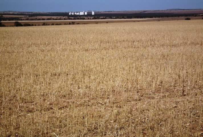 Buckleboo SA 5641 - Image 1