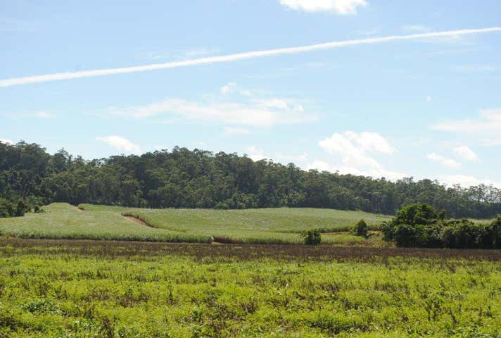 Walter Lever Estate Road Silkwood QLD 4856 - Image 1