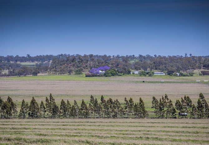 Cowarrie, 840 Southbrook- Felton Road Southbrook QLD 4363 - Image 23