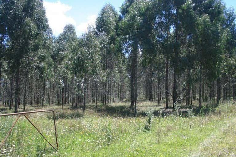 Walcha NSW 2354 - Image 3
