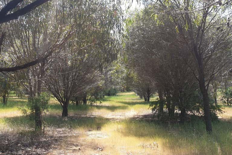 38 Avoca Road Morbinning WA 6304 - Image 1