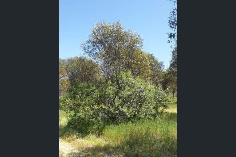 38 Avoca Road Morbinning WA 6304 - Image 3