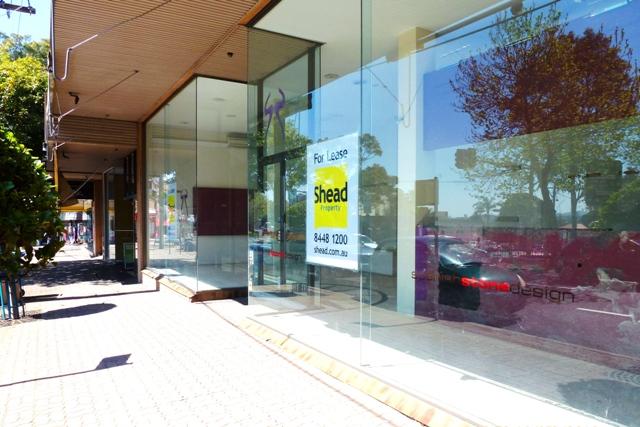 3A/565 Sydney Road Seaforth NSW 2092 - Image 1