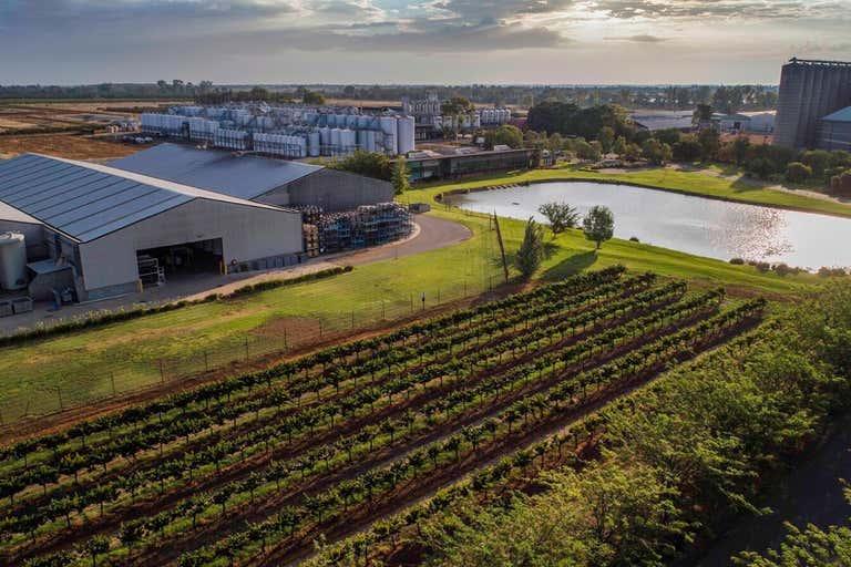 McWilliam's Wines Group 268 Jack McWilliam Road Hanwood NSW 2680 - Image 2