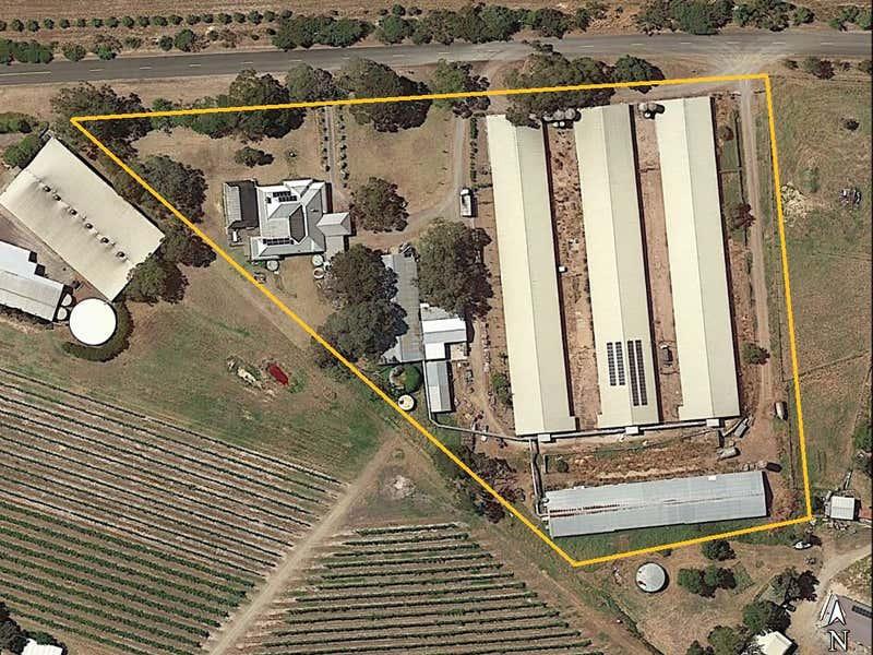 194 Brookmans Road Blewitt Springs SA 5171 - Floor Plan 1