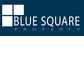 Blue Square Property